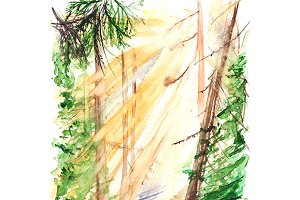 Watercolor morning forest landscape