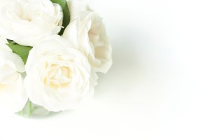 CLEAN! White roses