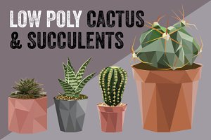 Low poly cactus & succulents