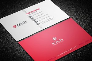 Elegant and Sleek Business Card