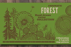 Forest and Growth Rings Decorations