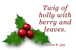 Twig of holly with berry and leaves