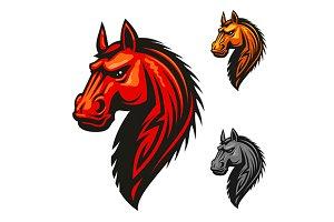 Horse stallion head