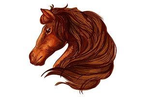 Horse with long wavy mane