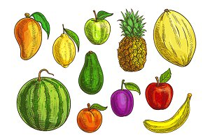 Hand drawn exotic tropical fruits