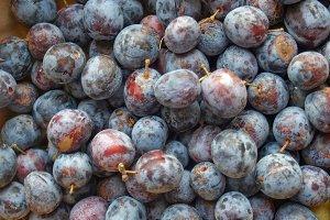Prune plum