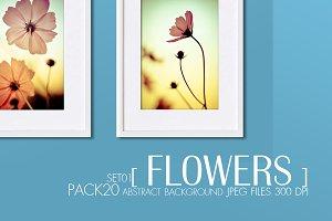 Ultimate set : Flowers vintage