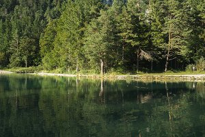 Reflections in the lake