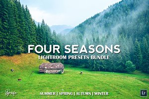 4 Seasons Lightroom Presets Bundle