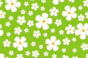 Pattern with Meadow Alpic Flowers