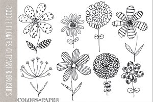 8 Doodle Flowers Clipart & Brushes