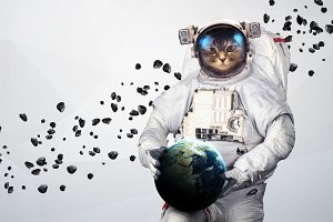 Cat Astronaut in outer space modern art. Elements of this image furnished by NASA.