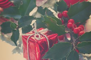 Holly  green leaves and red berries