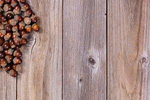 Autumn Acorns on rustic wood