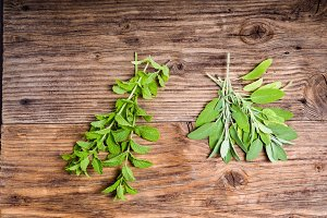 Mint and sage herbs
