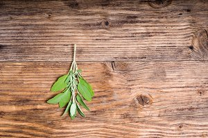 Sage herb on wooden table