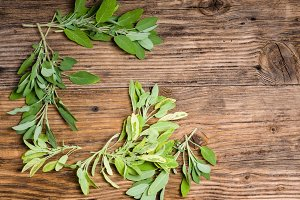 Fresh sage herb on table