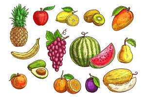 Hand drawn fruits sketches set