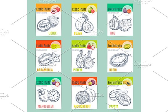 Exotic fruits posters and banners in Icons