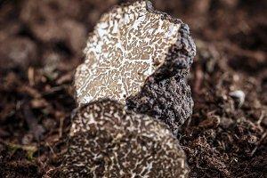 Black truffles