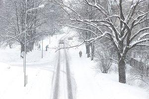 Snowfall. Winter. Riga