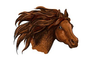 Horse head with wavy mane