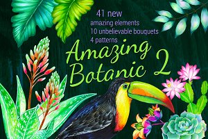 Amazing Botanic 2 - floral elements.