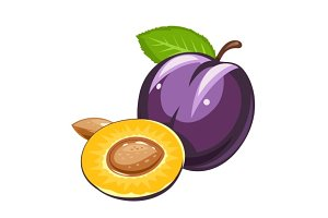 Plum. Ripe juicy fruit with nut and leaf