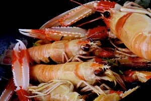Delicious Roasted Langoustines
