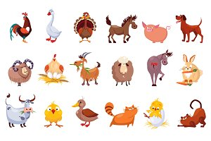 Farm Animal and Birds