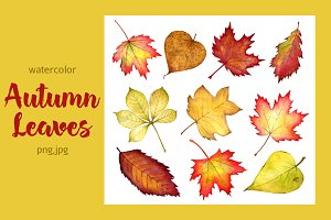 Autumn leaves part 1 . Watercolor.