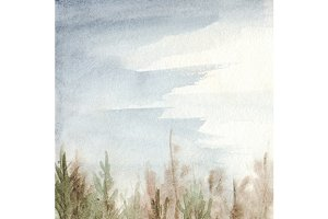Watercolor fog pine forest wood