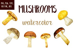 Wattercolor mushrooms