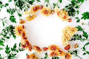 Floral frame with chrysanthemum