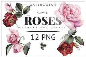 Pink and red roses 12PNG