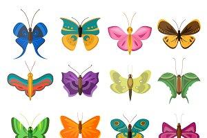 Butterflies flat style vector