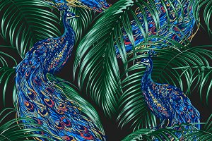Peacock,tropical palm leaves pattern