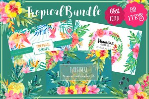 Tropical bundle 65% Off