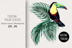 Toucan,palm leaves illustration