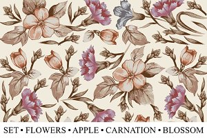 Set Flowers Apple Carnation Blossom