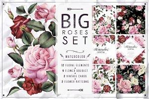 Big Roses Set