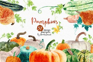 Pumpkins - Watercolor Elements