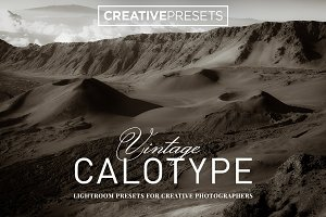 Vintage Calotype Lightroom Presets