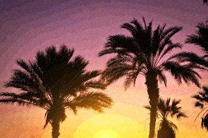 Palm tree, bright sunset, Tenerife