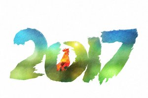 New 2017 - year of Fire Rooster
