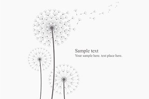 Dandelion + pattern
