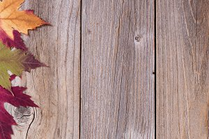 Autumn Leafs on Rustic Wood