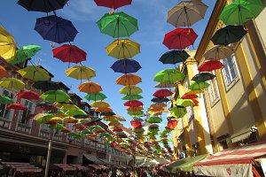 Umbrellas All Over