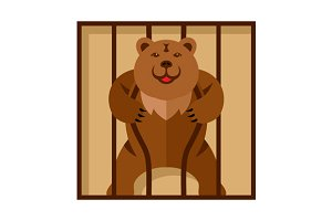 Bear in Zoo cage