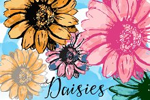 Daisies Flowers drawn watercolored